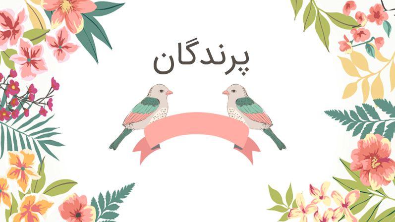 دریافت پاورپوینت درباره پرندگان