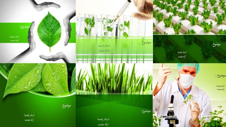 دریافت شش قالب پاورپوینت آماده برای رشته گیاه پزشکی